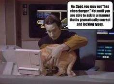 DATA THE GRAMMARIAN, Star Trek: The Next Generation