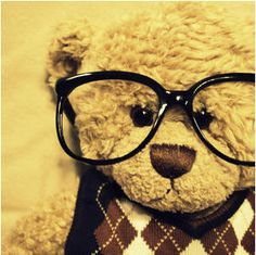 6479ce02eb8 Even stuffed animals want to be like us! Oso Teddy