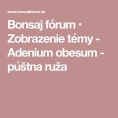 Bonsaj fórum • Zobrazenie témy - Adenium obesum - púštna ruža