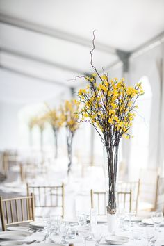 Our imagined centrepiece ideas made into reality. Vases of forsythia stems filled with rocks and salt.