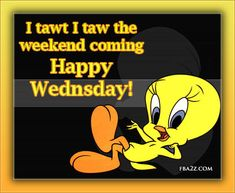 quotes on cartoon on tweety   Facebook Days of The Week Graphics, for sharing posts on Profile ...