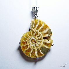 Unique! Ammonite pendant