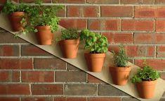 Mies+halkaisee+kukkaruukut+–+tuloksena+syntyy+nerokas+puutarha,+joka+mahtuu+parvekkeellesi