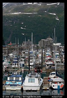 Yachts anchored in small boat harbor. Whittier, Alaska, USA