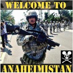 Welcome to Anaheimistan.