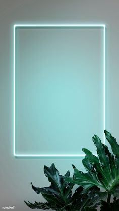 Neon red frame on a wall with leaves Framed Wallpaper, Pastel Wallpaper, Tumblr Wallpaper, Screen Wallpaper, Wallpaper Backgrounds, Aesthetic Backgrounds, Aesthetic Iphone Wallpaper, Aesthetic Wallpapers, Cadre Design