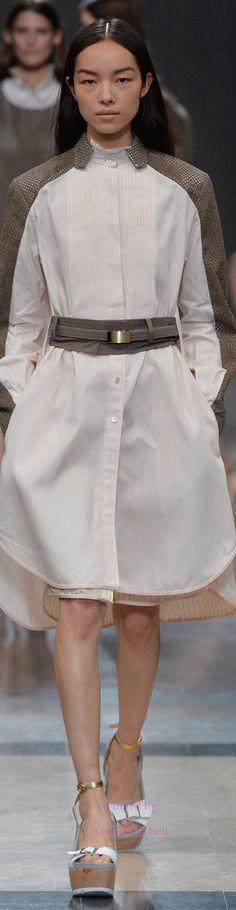 Sacai Collection Spring 2014 Ready-to-Wear