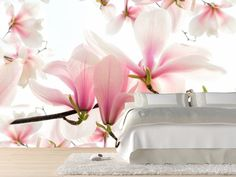 Blossoms of a magnolia tree in spring Wall Mural | Eazywallz