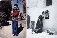 frida-kahlo-perro-gato 7 artistas fotografiados con sus perros y gatos - http://kcy.me/jsop