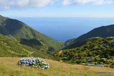 For me, São Jorge is the best island in the Azores. Why? For its spectacular scenery, walks, natural swimming spots, patterned pavements and more besides.