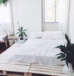 plantas room