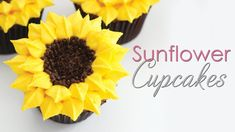 So for this weeks video tutorial I am showing you how to pipe these pretty buttercream sunflower cupcakes. How To Make Sunflower, Sunflower Crafts, Sunflower Cupcakes, Bee Cupcakes, Summer Cupcake Recipes, Cupcake Flower Pots, Cupcake Piping, Cupcake Videos, Sunflower Baby Showers