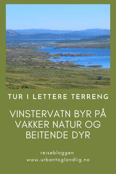 Når du står på Rjupa og ser utover Vinstervatn der det ligger langstrakt, da er det lett å bli bergtatt. Innover Jotunheimvegen kan du rusle, kjøre eller sykle med barn. Vinterstid er Vinsterrunden en fin tur. #beitostølen #vinstervatn #jotunheimvegen #norgesferie #norge #jotunheimen #fjelltur Voyage, Nature