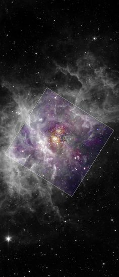Dusty stellar nursery RCW 49 surrounds young star cluster Westerlund 2 in this remarkable image. Westerlund 2 itself is a mere 2 million years old or less, and contains some of our galaxy's most luminous, massive and therefore short-lived stars. Infrared data from the Spitzer Space Telescope is shown in black and white, complementing the Chandra X-ray image data (in false color) of the hot energetic stars within the cluster's central region.