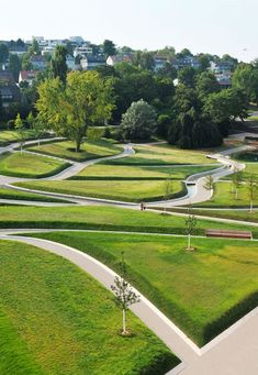 The Curious Case of Killesberg Park: A Landscape Telling Its Own Story - Landscape Architects Network