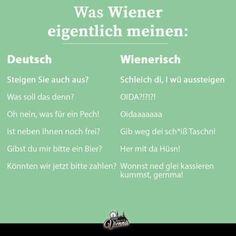 Austria, Humor, Funny, Funny Animal Jokes, Funny Sarcastic, Proverbs Quotes, Funny Stuff, Random Stuff, Simple