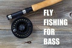 Fly fishing for bass can be fun but it does require a different approach. 6 things to consider when fly fishing for largemouth - smallmouth bass. Fly fishing for bass Fly Fishing For Bass, Bass Fishing Tips, Trout Fishing, Fishing Lures, Fishing Basics, Fishing Tricks, Fishing Stuff, Fishing Knots, Ice Fishing