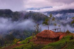 Waghi Valley, Western Highlands, Papua, New Guinea