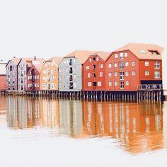 Lubię miasta większe ale nie w stylu metropolii. Trondheim właśnie takim miastem jest.  założone w 997 r. przez króla Olava cechuje się ciekawą historią którą widać na każdym kroku. Kiedyś to miasto nazywane Nidaros dzisiaj ma prawie 200 tysięcy mieszkańców i dwa duże Uniwersytety które przyciągają młodych z całej Norwegii i nie tylko.  z tego powodu praktycznie nikt z kim pracuje na co dzień nie jest z Trondheim. Sporo osób przyjechało z Oslo albo północy albo... z innych krajów  jak ja…