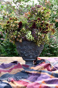'Welcome Fall' Floral Arrangement of Hydrangeas, Coleus, Abelia and Crape Myrtle Seed Pods in Urn   ©homeiswheretheboatis.net #fall #arrangement #hydrangeas