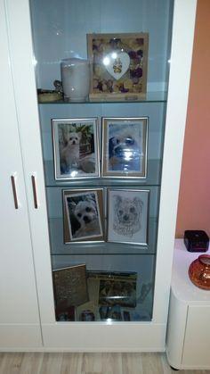 China Cabinet, Bathroom Medicine Cabinet, Liquor Cabinet, Storage, Furniture, Home Decor, Animals, Homemade Home Decor, Larger