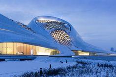 Galería de Opera Harbin bajo el lente de Iwan Baan - 22
