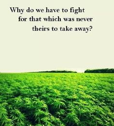 Good question. FREE THE WEED!! Legalize marijuana.
