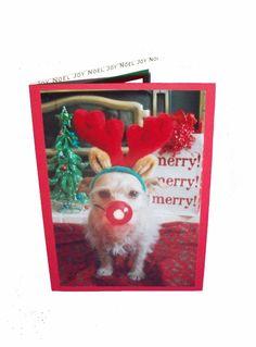 Reindeer Christmas Card Fun Dog Christmas Card by Lillyzcardz, $4.00