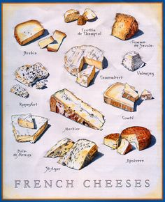~~Know Your French Cheeses | Beautiful illustrations of various French cheeses as featured in Cook's Illustrated magazine/March & April 2007 issue | by Zeetz Jones~~