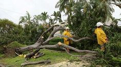 Cyclone Marcia Comebacks, Image