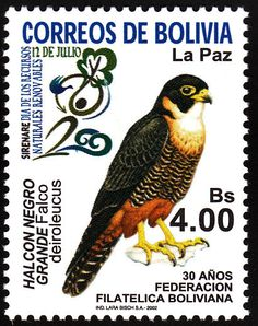 Orange-breasted Falcon stamps - mainly images - gallery format