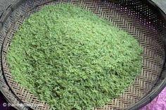 Thailändischer grüner Reis