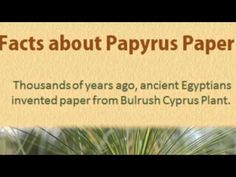 Get to know the history and facts about ancient egyptian papyrus paper.
