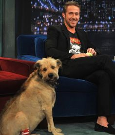 "As if you needed another reason to find Ryan Gosling adorable, this hot actor loves his pooch George so much that they're seen everywhere together. From hikes to airports, George is Gosling's most loyal companion. Gosling even shares the limelight with him. He brought George along when he made an appearance on ""Late Night with Jimmy Fallon."" Credit: Getty Images"