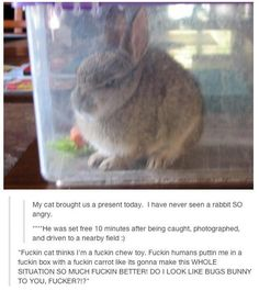DailyFailCentral | Funny Pictures Updated Daily