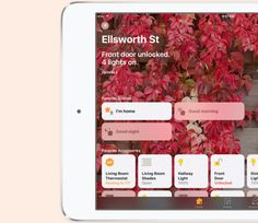 Dont have an Apple TV? The iPad can also be a Home Hub for HomeKit devices