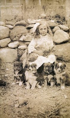 Girl with four puppies and cat by benicektoo, via Flickr