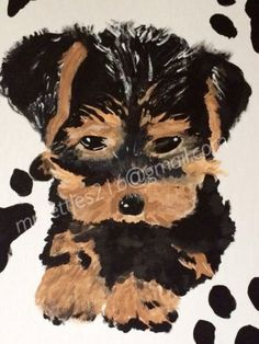 Snickers Yorkie Puppy Dog