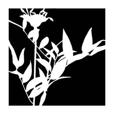 "Silhouette of a Wildflower Bouquet is a 6""X6"" stencil available via this link at StencilGirlProducts -- http://www.stencilgirlproducts.com/SearchResults.asp?Search=silhouette+of+a+wildflower+bouquet&Submit="