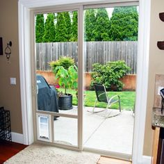 Sliding glass dog door. This is so necessary.