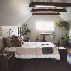 homesteadseattle:展望airbnb、我々はyaのために来ています。