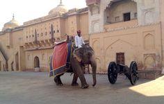 Indien: Rundreise durch Rajasthan #indien #fernreise #reiseblog #reiseblogger