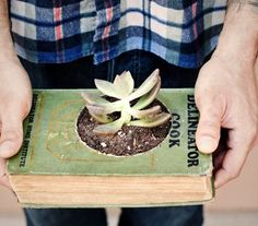 15 Creative DIY Projects Featuring Recycled Old Books - planter! Totally Potterfying it - One Thousand Magical Herbs & Fungi? Book Crafts, Diy Crafts, Diy Inspiration, Cactus Y Suculentas, Do It Yourself Home, Container Gardening, Flat Gardening, Book Art, Succulents