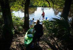 International Coastal Cleanup 2015 at Phillippi Creek | Photo Galleries | HeraldTribune.com