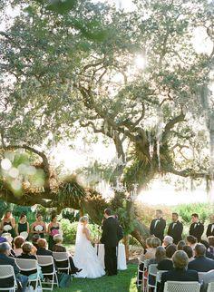 Marie Selby Botanical Gardens Wedding  Read more - http://www.stylemepretty.com/florida-weddings/sarasota/2014/02/10/marie-selby-botanical-gardens-wedding/