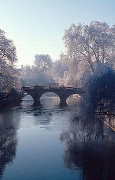 Clare Bridge, Cambridge, England | by David Biggins