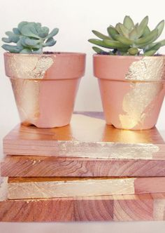 """DIY Rustic Glamour Plant Pots +€"""" Getting ready for Spring!"""