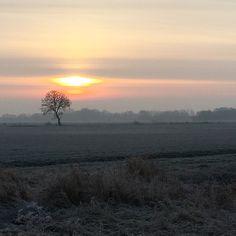Every morning the sky has different colors! Blue, orange, pink, grey, yellow! This is today's!   #sunrise #morninghasbroken #giethoorn #water #weerribben #nationaalparkdeweerribben #staatsbosbeheer #morningwalk #sun