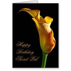 This Deals Birthday card for secret pal Yes I can say you are on right site we just collected best shopping store that have