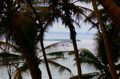 Around the corner, over the hill, and down the rainforest track from @fsseychelles you can peer through the trees to find #Seychelles surf perfection. Put yourself in this picture with @tropicsurf #luxurysurfing #yesterday #seclusion. Accom and surf reservations at info@tropicsurf.net